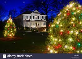 Outdoor Christmas Trees by Outdoor Christmas Trees Have Been Decorated With Red Green And