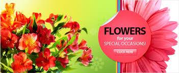 fresh flower delivery makemyflowers send fresh flowers thru international flower