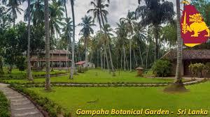 Botanical Garden Station by Gampaha Botanical Garden In Sri Lanka Youtube