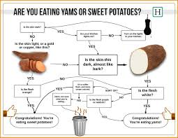 A Root Vegetable - the ultimate guide to cooking root vegetables you u0027d have to be