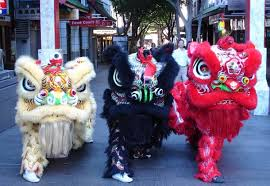 lion dancer book sydney lion team