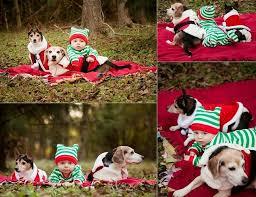 7 best christmas card ideas images on pinterest christmas ideas