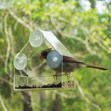 clear plastic window bird feeder acrylic bird feeders parrot integrated sparrow equipment clear