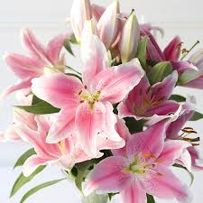 pink lilies pink bouquets need4flowers