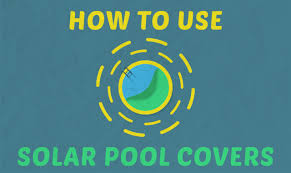 How To Keep Mosquitoes Away From Backyard How To Keep Mosquitoes Away From Your Pool