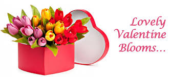 Valentine Flowers Convey Your Love Confessions With Beautiful Valentine Flowers