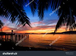 beautiful silhouette coconut palm tree lighthouse stock photo