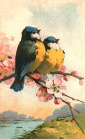 155 best birds painted watercolors images on pinterest bird