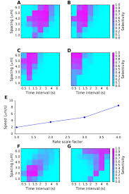 synaptic input sequence discrimination on behavioral timescales