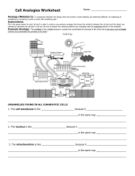 cell analogy worksheet free worksheets library download and