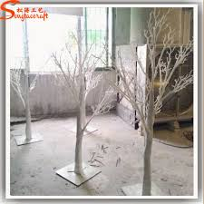 manzanita branches for sale manzanita tree tree branches of agriculture tree branches for