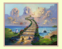 boxer dog in heaven rainbow bridge all dogs go to heaven boxer poodle 11x14 matted