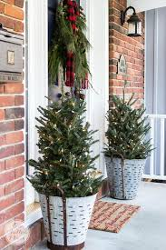 potted christmas tree 30 stunning potted christmas tree decoration ideas christmas