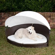 Pet Canopy Bed Gorgeous Pet Bed Large Alfresco Ratten Pet Canopy Bed