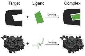 docking molecular wikipedia