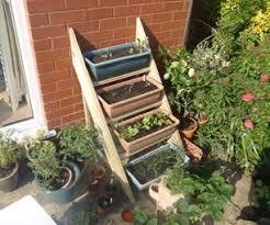 55 best gardening ideas how to u0027s images on pinterest gardening