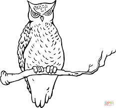 owl on the tree coloring page free printable coloring pages