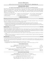 Sales And Marketing Resume Examples by Vice President Of Operations Resume Examples