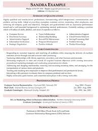 summary in a resume resume summary exles for customer service resume templates