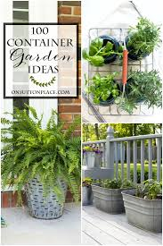 100 container garden ideas