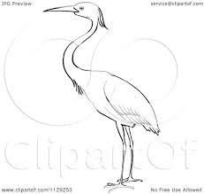cartoon clipart of an outlined heron bird black and white vector
