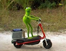 Kermit Meme Images - kermit memes memeshappen
