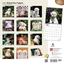 australian shepherd 2015 calendar bichon frise puppies calendars 2018 on abposters com