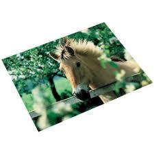 sous cheval bureau sous mains de bureau 530 x 400 mm cheval à la clôture laufer