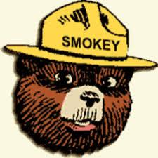 Smokey The Bear Meme Generator - smokey the bear know your meme