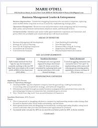 professional resume exles free professional business owner resume small business owner resume