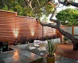 baum fã r balkon 22 best gartenzaun images on backyard ideas garden