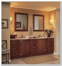 Under Bathroom Sink Storage Ideas by Under Sink Storage For Bathroom Home Design Ideas