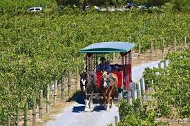 our tours boise township tours trolley tours of historic boise the best temecula tours excursions u0026 activities 2017 viator