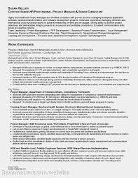 Team Leader Resume Format Bpo 100 Team Leader Resume Sample Transferable Skills Resume