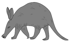 all free clipart free aardvark cliparts free clip free clip on