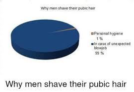 pubic hair shaved on tumbler 25 best memes about pubic hair pubic hair memes