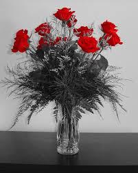 Arranging Roses In Vase Arrange A Dozen Roses In A Vase Dozen Roses Rose And Flowers