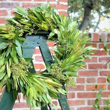 bay leaf wreath leucadendron wreath front door wreaths for wreath