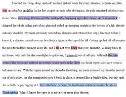 paragraphs caitlin s portfolio