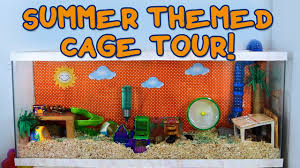 Hamster Cages Cheap Summer Themed Hamster Cage Tour Youtube