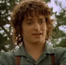 Frodo Meme - frodo plot hole know your meme