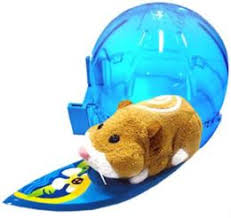 zhu zhu pets hamsters u0026 accessories shushu pets hubpages