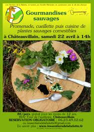 cuisine plantes sauvages promenade cueillette et cuisine de plantes sauvages comestibles