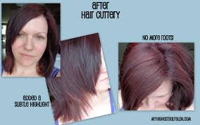 how much is a haircut at hair cuttery haircut ideas u0026 reviews