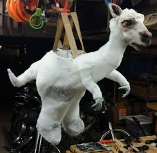 how clint case won halloween with a tauntaun riding luke skywalker
