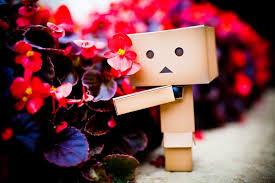 Nice Flowers Nice Flowers By Darktiger4u On Deviantart