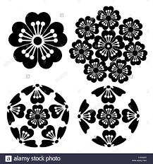 the stylized sakura flower japanese symbolism illustration stock