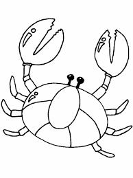animal coloring pages printable free printable pages crab crab coloring page coloring pages sea