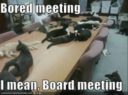 Board Meeting Meme - cats having secret meetings in an attempt to control the internet