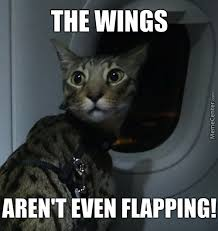 Plane Memes - plane memes best collection of funny plane pictures